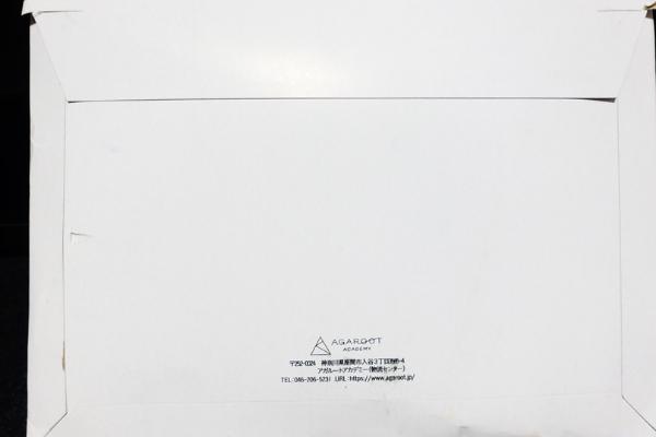 アガルート 行政書士講座 資料請求 封筒